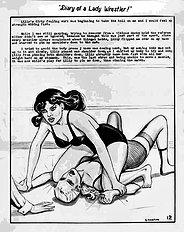 Diary of a lady wrestler (Stanton,Eric)